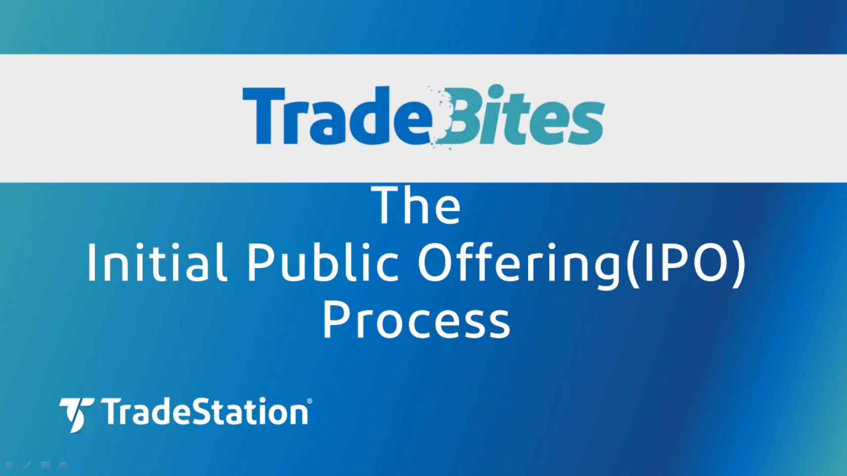 The Initial Public Offering Process